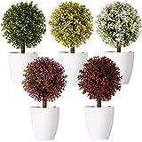 FagusHome 20cm Alto Plantas Artificiales en Maceta 5 Piezas rbol en Forma de Bola en Maceta boj Artificial plstico para decoracin (A)