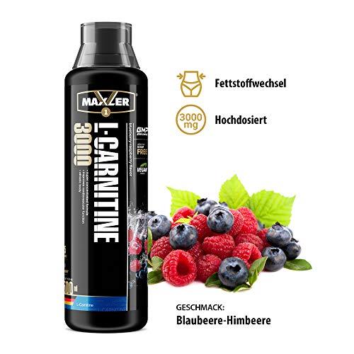 Veganes L-Carnitine 3000 Liquid - Hochdosiertes Diätetisches Getränk beliebt in Fettverbrennung-Diät, Definitionsphase - 3000mg von L-Carnitin pro Portion - Blaubeere-Himbeere - 500ml