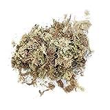 happygirr Musgo de Sphagnum para Bonsai 12L sustrato Musgo de turba Natural para Control de la Humedad en el terrario para Phalaenopsis Suministros orqudea jardn
