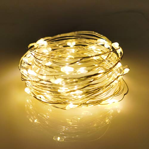 LED Fairy String Lights, 12-Pack 20 Micro Lights On Silver Copper...