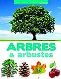 Encyclopédie visuelle des arbres et arbustes