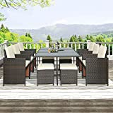 Tulib 11 Pieces 11Pieces Patio Dining Sets, Outdoor Space Saving Rattan Chairs with Glass Table, PE Wicker Furniture Cushioned Seating and Back Sectional Conversation (Brown)