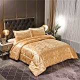 Raytrue-X Queen Comforter Set- Luxury Gold Silk Bed Set All Season Lightweight Quilt Soft Microfiber Bedding comforters & Sets Matching 2 Pillow Shams (Full/Queen, 3 Pieces, 88-by-88 inches)