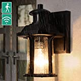Dusk to Dawn Motion Sensor Light, 3 Modes Outdoor Light Fixture with Bulb, Waterproof Seeded Glass...