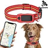 Traceur GPS Chien pour Animaux et Système de Temps réel Localisation...