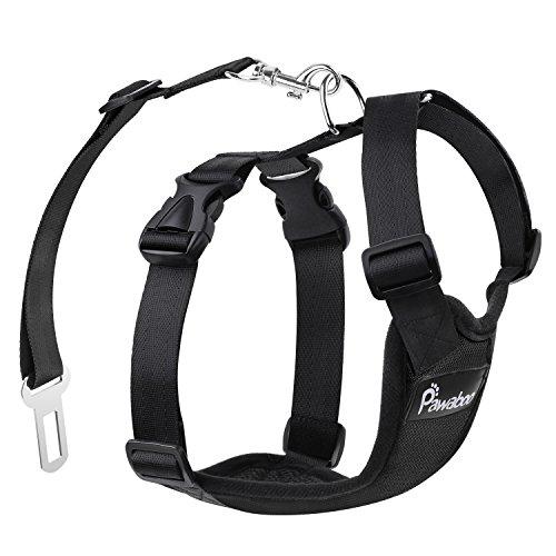 51OXKcfXPfL - Best Dog Seat Belt To Buy In 2020