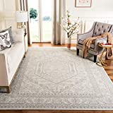 Safavieh Adirondack Collection ADR108B Ivory and Silver Oriental Vintage Medallion Area Rug (9' x 12')