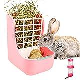 Distributeur de nourriture 2 en 1 pour lapins, cochons d'Inde,...
