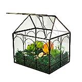 Large Tall Plant Terrarium Glass – Glass Greenhouse Terrarium with Lid,Indoor Tabletop Orchid Succulent Cacti Terrarium Kit 9.2'x8.7'x5.9' NA (House Black B)