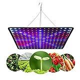 45 W Lmpara de Cultivo LED Espectro Completo, 225 LED Lmpara de Crecimiento de Plantas de Espectro Completo para germinacin de Plantas de Interior, plntulas, Verduras y Flores