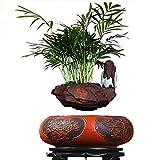lqgpsx Maceta de bonsi Flotante - Macetas de Flores de Aire de levitacin con suspensin magntica - Bonsai de levitacin de diseo Creativo - Decoraciones para el hogar - Regalo Divertido