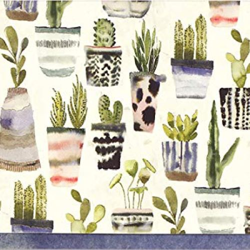 Watercolor Succulents Note Cards (Stationery, Boxed Cards)