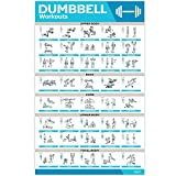 """Laminated Large Dumbbell Workout Poster – Perfect Dumbbell Exercise Poster For Home Gym – Large Size 17"""" x 27"""" Exercise Chart Contain 40 Illustrated Exercises For Dumbbells"""