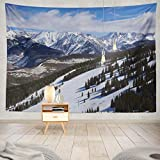 ONELZ Decor Collection, Ski Run with Colorado Mountains Winter Colorado Winter Snow Valley Bedroom Living Room Dorm Wall Hanging Tapestry 60 L x 80 W Polyester Blend