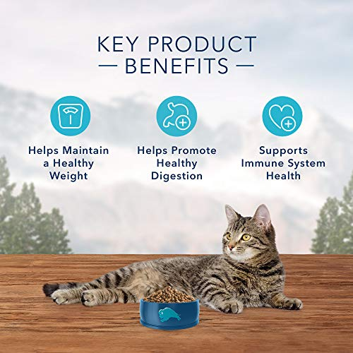 Blue Buffalo Wilderness High Protein, Natural Adult Weight Control Dry Cat Food, Chicken 11-lb 5