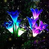 Solar Garden Flower...image