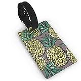 JKOVE Etiquetas Equipaje,Cool Pineapple Pattern-01.PNG identificador de Maletas de Etiqueta de Plano patrón Equipaje Bolso ID Tag portatarjetas con Llavero