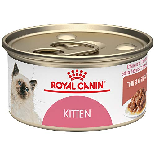 Royal-Canin-Feline-Health-Nutrition-Kitten-Thin-Slices-In-Gravy-Canned-Cat-Food-3-Ounce-Can-Pack-of-24