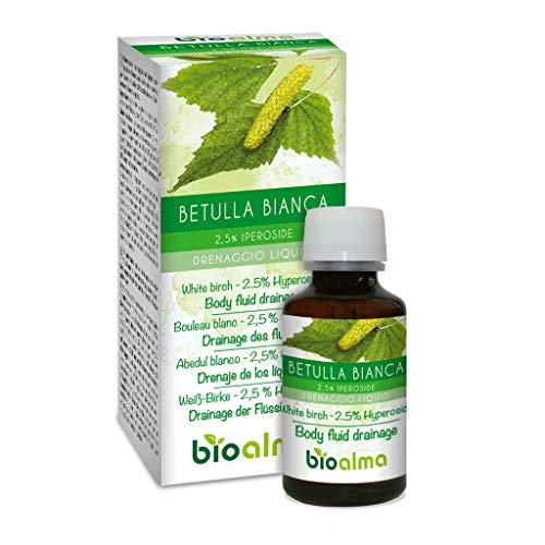 Weiß-Birke (Betula alba oder pubescens) Naturalma | 2,5% Hyperoside | 120 Tabletten à 500 mg | Drainage der Flüssigkeiten | Nahrungsergänzungsmittel mit titriertem extrakt | Veganer