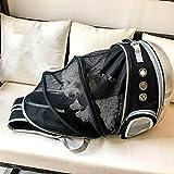 ZBHGF Ampliable Portador del Gato Mochila, Cápsula Espacial Burbuja Portador del Gato para El Pequeño Perro, Mascotas Yendo De Excursión el Morral Que Acampa,Negro