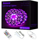 [65.6ft /20m] RGB LED Strip Lights Ultra-Long Color Changing Light Strip with Remote, 600LEDs Bright...