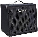 Roland KC-200 4 Channel Mixing Keyboard Amplifier, 100-Watt