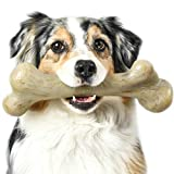 Pet Qwerks Extreme Dinosaur BarkBone Dog Chew Toy, Bacon Flavor, XLarge (DBB3)