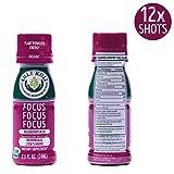 Kuli Kuli Moringa Focus Focus Focus Function Forward Wellness Shots, 2.5 Oz Shots, Natural Energy From Superfoods Including Moringa & Lion's Mane 12Count
