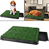 Befied Toilette pour Animaux Tapis d'herbe Matelas...