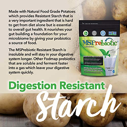 Prebiotic Powder Fiber Supplement: UNFLAVORED Digestive Gut Health Prebiotics by MSPrebiotic. Best Natural Superfood Health Supplements Feed Probiotics for Women, Men. Pre Workout Energy (Gift Box) 6