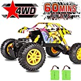 RC Car DOUBLE E 1/18 Remote...
