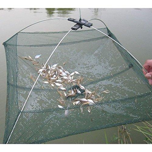 Favolook - Red de pesca con trampa plegable y sistema de inm
