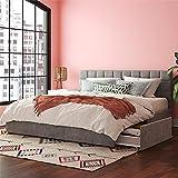 CosmoLiving by Cosmopolitan Serena Upholstered Bed with Drawers, Bedroom Storage, King, Light Gray Velvet