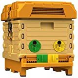 Apimaye Insulated 7 Frame Langstroth Nucleus Bee Hive Nuc Queen Castle
