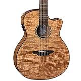 Luna Guitars High Tide Grand Concert Nylon 6 String Acoustic/Electric Guitar, Right, Mahogany (HT EXM NYL)