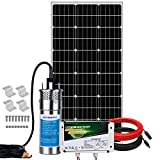 Pumplus Complete 100W Solar Well Pump System, Large Flow 3.2GPM, 100W Solar Panel + Stainless Submersible Well Pump + 6AH Lithium Battery + 16ft Cables for Remote Watering, Garden, Irrigation, Tank