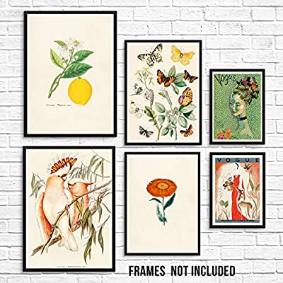 """This mixed set of 6 vintage pictures includes two of each size as follows - two 11""""x14"""" lemon and birds, two 8""""x10"""" butterflies and orange flower, two 5""""x7"""" vintage vogue covers. They come UNFRAMED. Pictures shown are for inspiration only. The frames..."""