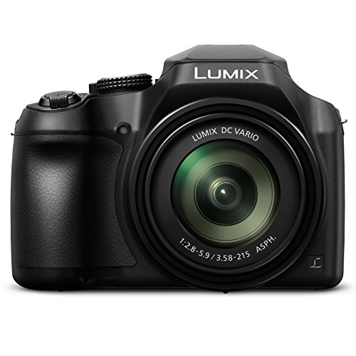 PANASONIC Lumix FZ80 4K Digital Camera (Black)