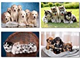 4Pcs x Poster Dog Husky Chihuahua Golden Retriever Pug Puppy Dog Cute Adorable Pets Animal for Pet Shop Room Hotel Office Wall Deco Prints 20x13' (50x33cm) (1-4)