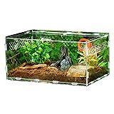 Reptiles Boîte en Verre Terrarium Maison, Acrylique Transparent...