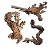 PINVNBY Natural Aquarium Driftwood Assorted Branches Reptile Ornament for Fish Tank Decoration Pack of 3
