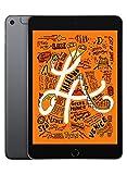 Apple iPad Mini (Wi-Fi + Cellular, 64Gb) - SpaceGrau (Neuestes Modell)