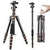 K&F Concept - Treppiedi per Fotocamera BA225, Treppiede professionale in...