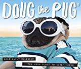 Doug the Pug 2020 Box Calendar (Dog Breed Calendar)