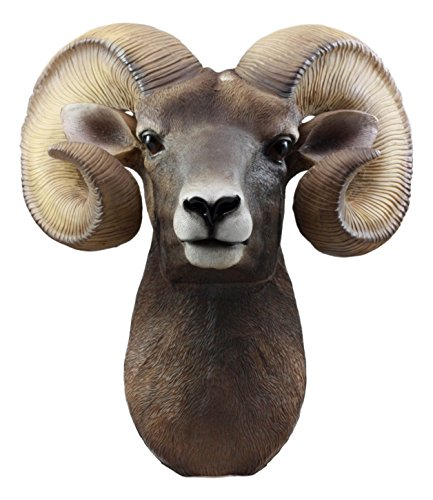 Ebros Rocky Mountains Bighorn Ram Trophy Taxidermy Wall Decor Sculpture Hanging Plaque Figurine 15'H