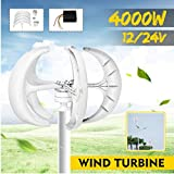 SISHUINIANHUA 4000W Vertical Axi Wind Turbines Generator Lantern 12V 24V 5 Blades Motor Kit for Home Hybrids Streetlight Use Electromagnetic,24v