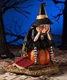Bethany Lowe Halloween TD7636 Fear of Flying Witch 2018