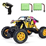 DDYX2020 RC Graffiti Rock Crawler Monster Truck Hors Route 2.4GHz 4WD...