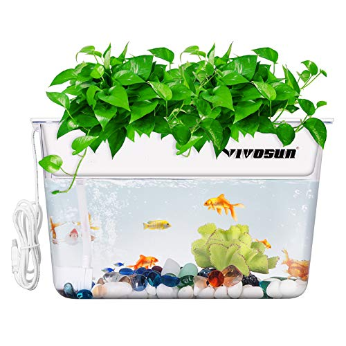 VIVOSUN Aquaponic Fish Tank Hydroponic Cleaning Tank Fish Feeds Plants and Plants Clean Tank