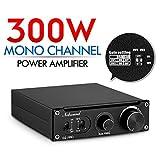 300W Subwoofer Amplifier Mono Power Amp PBTL/BTL Bridge Mini Sub Amp Home Theater